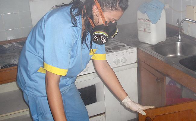 Otras limpiezas for Trabajo de limpieza en murcia